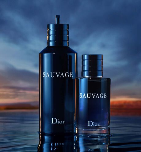 Image product Sauvage 3 aria_openPlayer